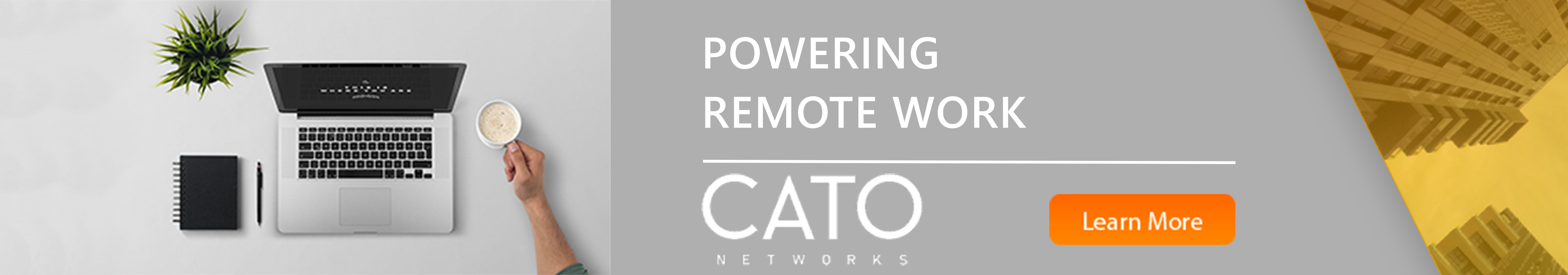 CATO Work from home solutions banner